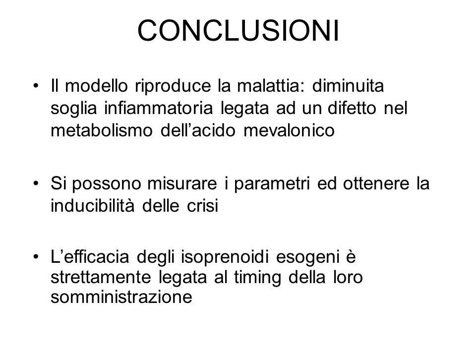 CONCLUSIONI Il modello riproduce la malattia: diminuita soglia infiammatoria legata ad un difetto nel metabolismo dell'acido mevalonico.