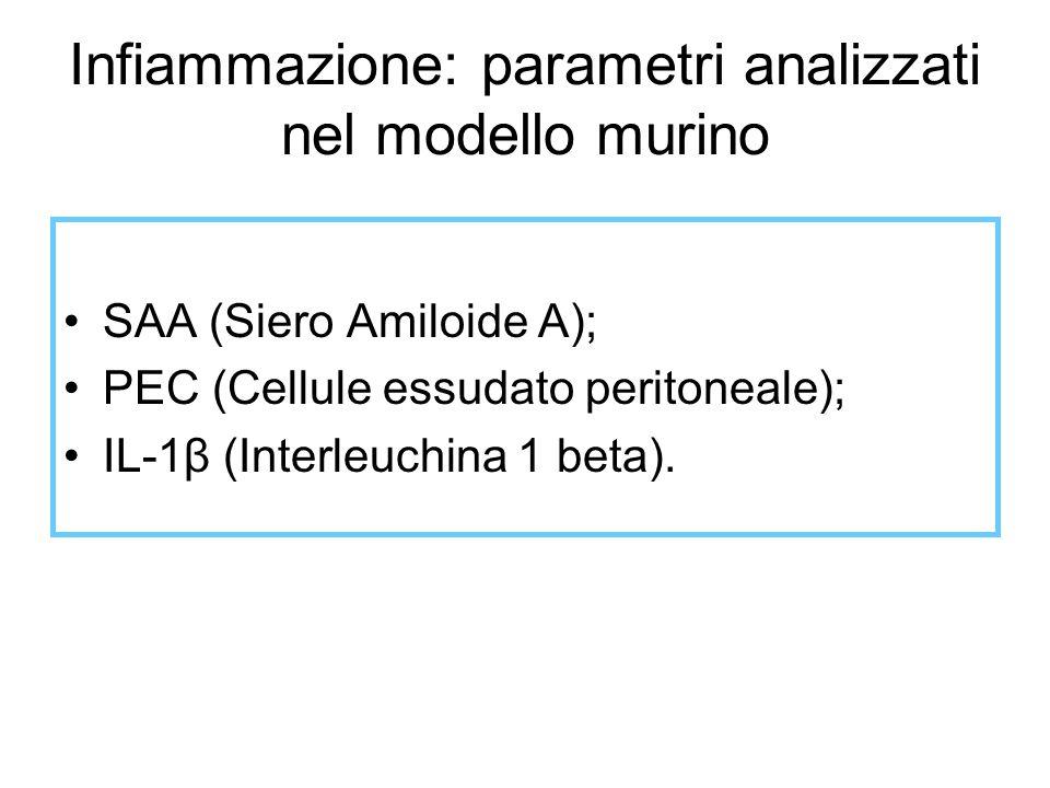 Infiammazione: parametri analizzati nel modello murino