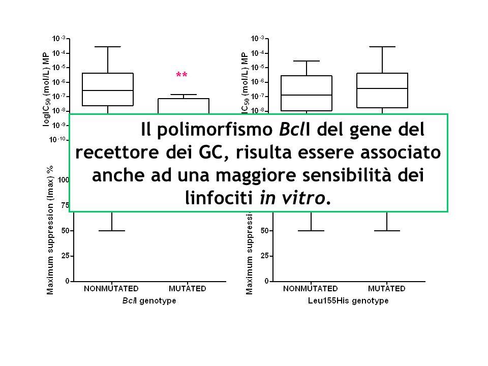 ** Il polimorfismo BclI del gene del recettore dei GC, risulta essere associato anche ad una maggiore sensibilità dei linfociti in vitro.