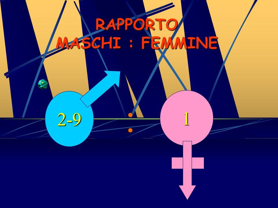 RAPPORTO MASCHI : FEMMINE
