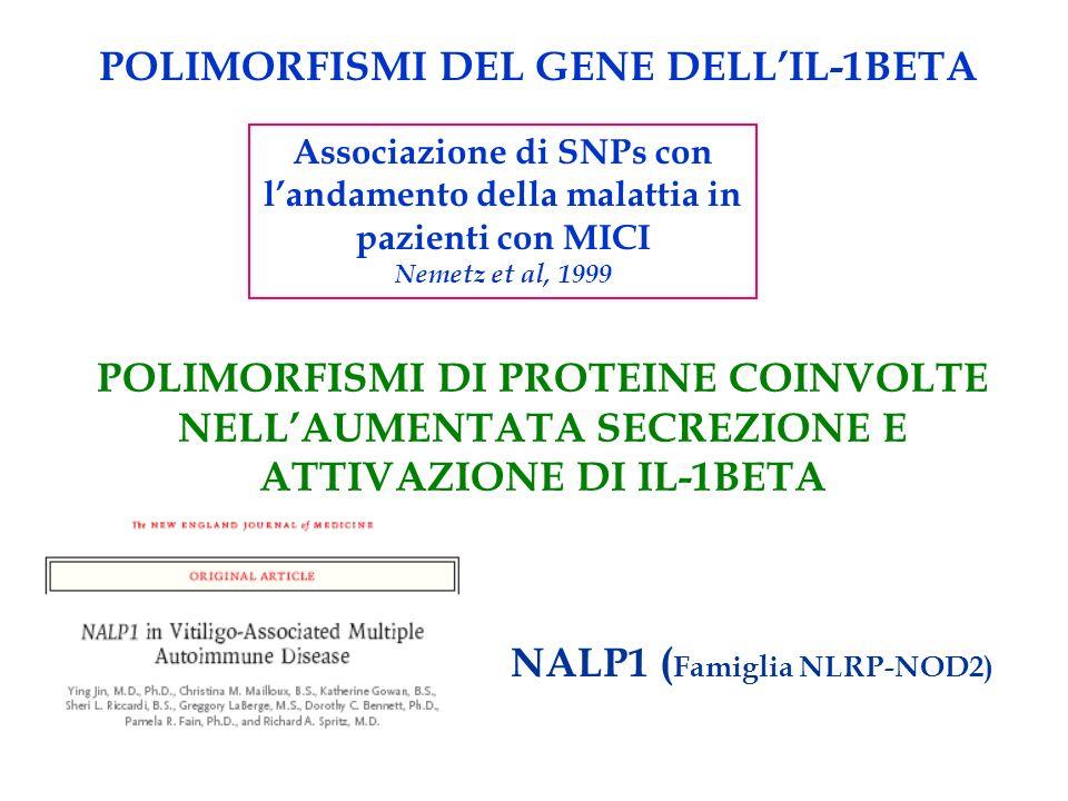 POLIMORFISMI DEL GENE DELL'IL-1BETA NALP1 (Famiglia NLRP-NOD2)