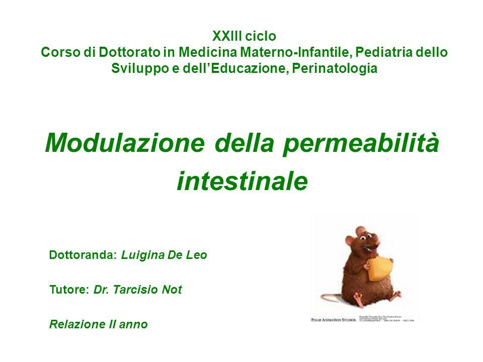 Modulazione della permeabilità intestinale