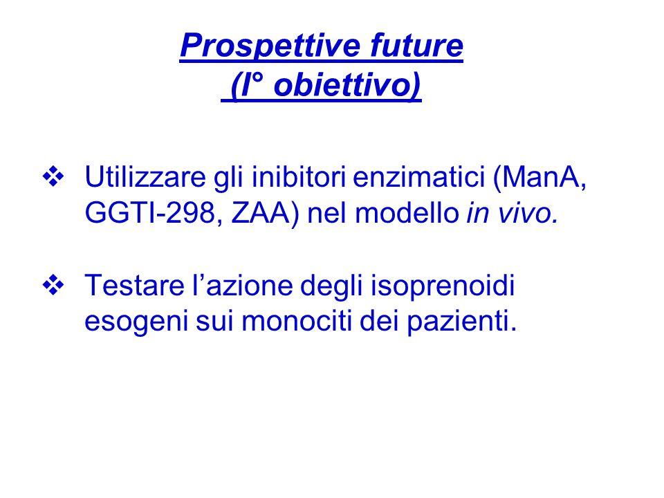 Prospettive future (I° obiettivo)