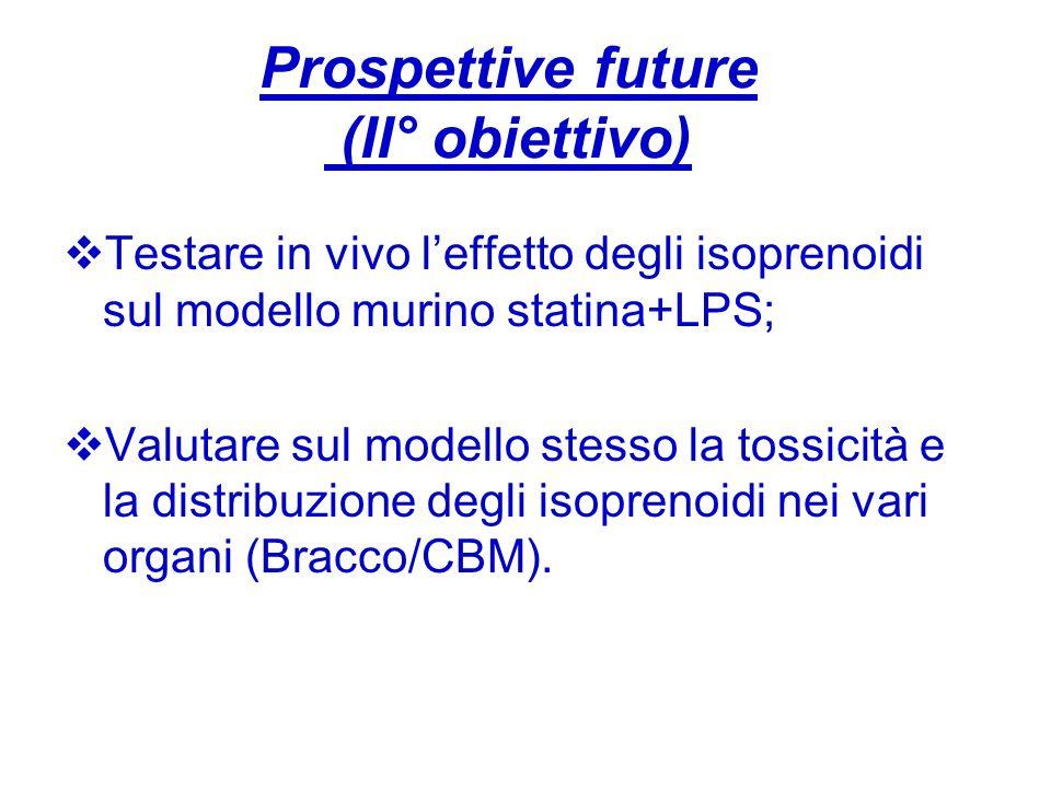 Prospettive future (II° obiettivo)