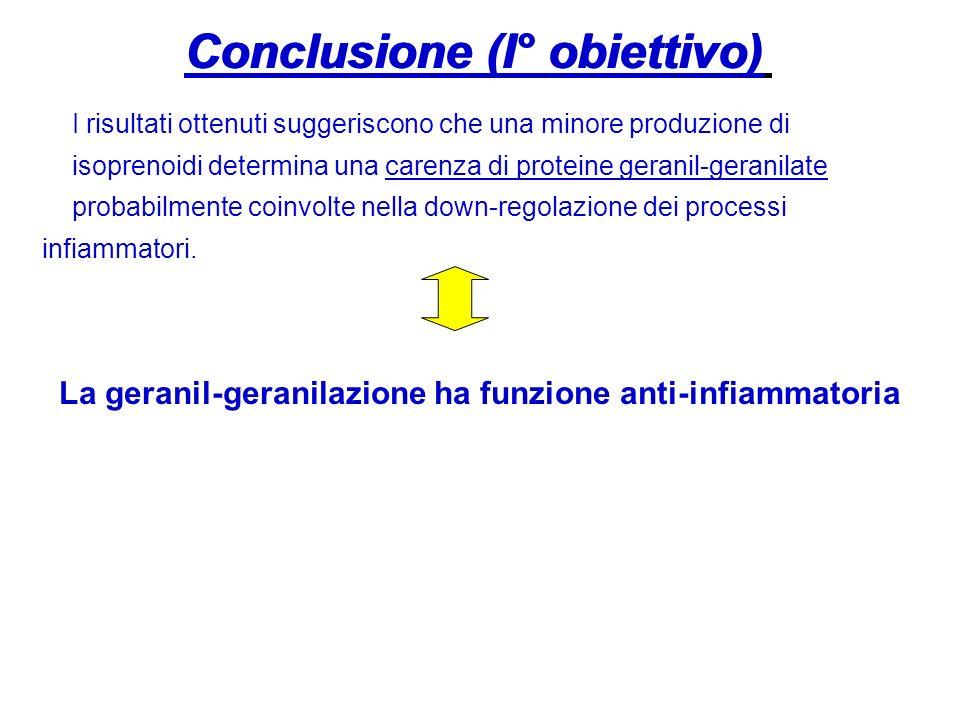 Conclusione (I° obiettivo) Conclusione (I° obiettivo)