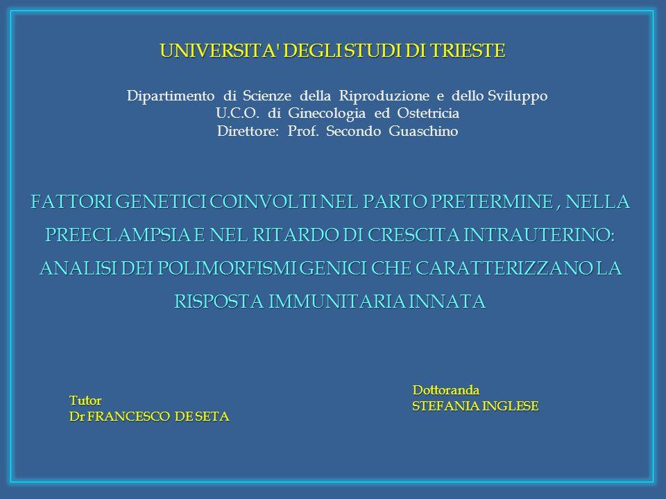 UNIVERSITA DEGLI STUDI DI TRIESTE