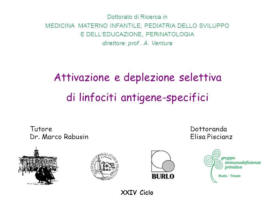 Attivazione e deplezione selettiva di linfociti antigene-specifici