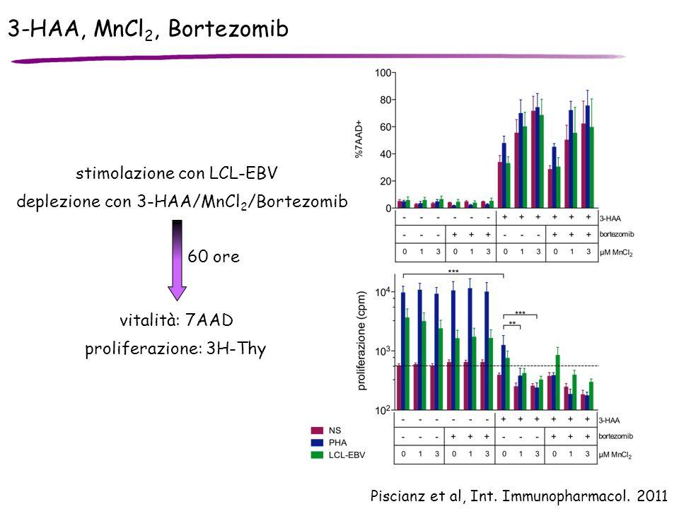 3-HAA, MnCl2, Bortezomib stimolazione con LCL-EBV
