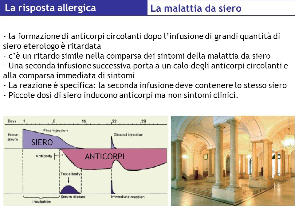 La risposta allergica La malattia da siero