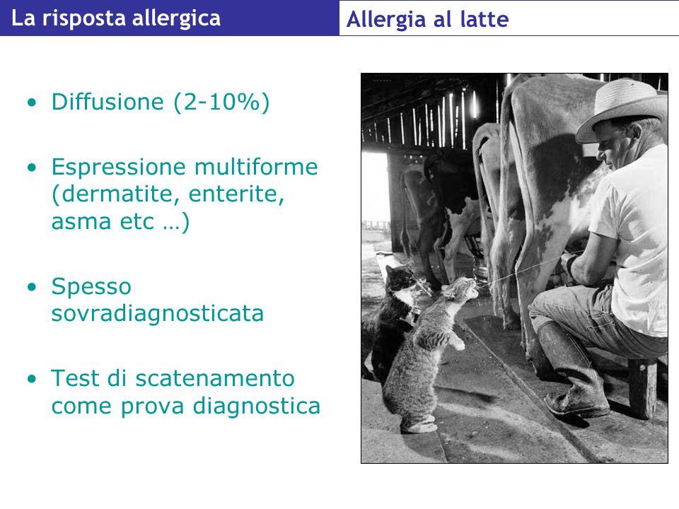La risposta allergica Allergia al latte. Diffusione (2-10%) Espressione multiforme (dermatite, enterite, asma etc …)