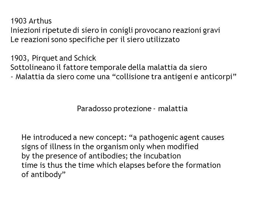 1903 Arthus Iniezioni ripetute di siero in conigli provocano reazioni gravi. Le reazioni sono specifiche per il siero utilizzato.