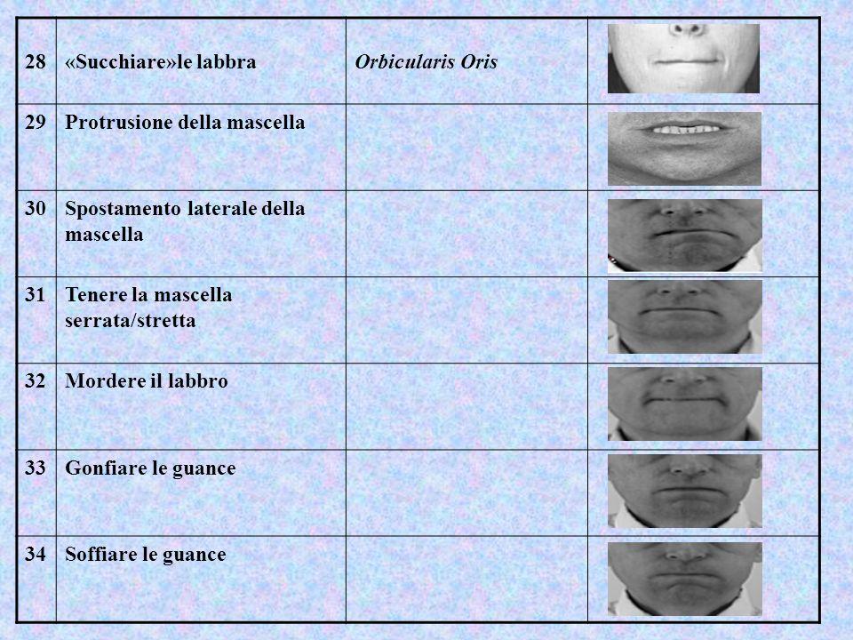 28 «Succhiare»le labbra. Orbicularis Oris. 29. Protrusione della mascella. 30. Spostamento laterale della mascella.