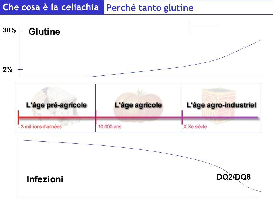 Che cosa è la celiachia Perché tanto glutine 200 anni Glutine
