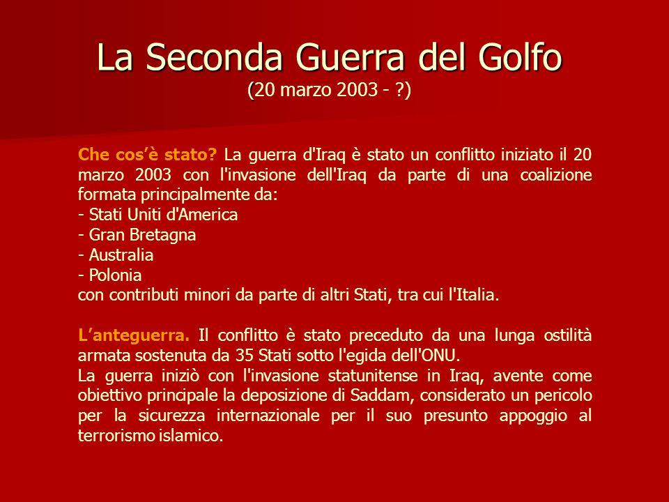 La Seconda Guerra del Golfo (20 marzo 2003 - )
