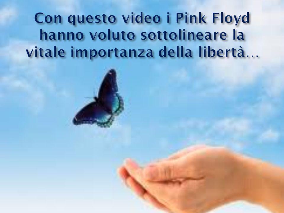 Con questo video i Pink Floyd hanno voluto sottolineare la vitale importanza della libertà…
