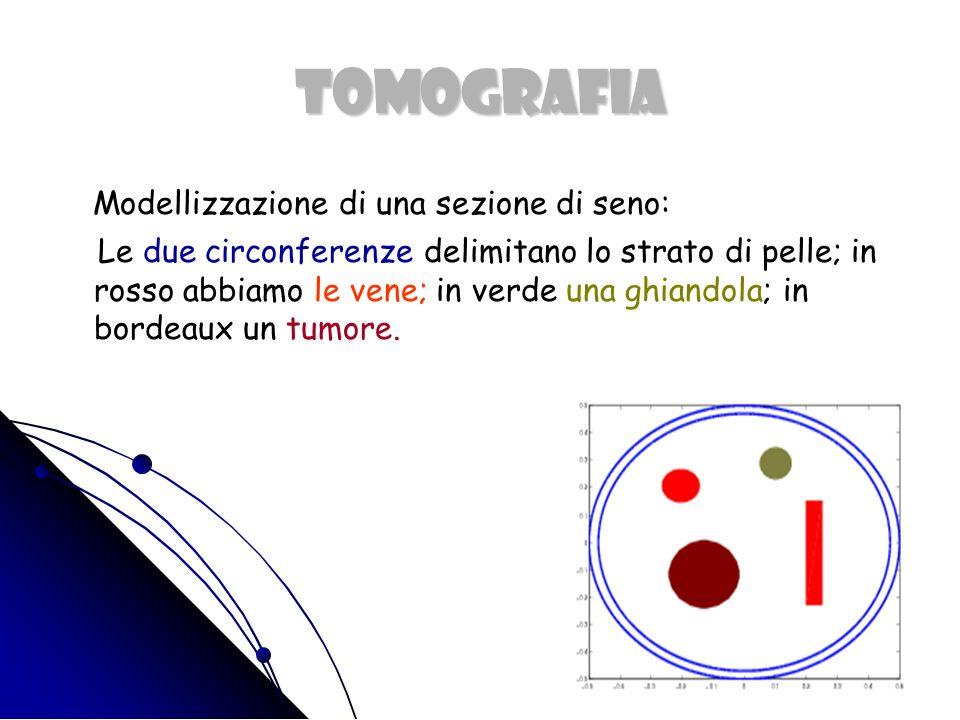 TOMOGRAFIA Modellizzazione di una sezione di seno::