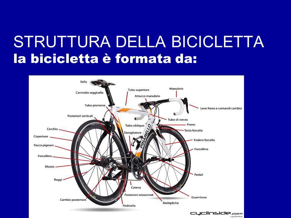 STRUTTURA DELLA BICICLETTA la bicicletta è formata da: