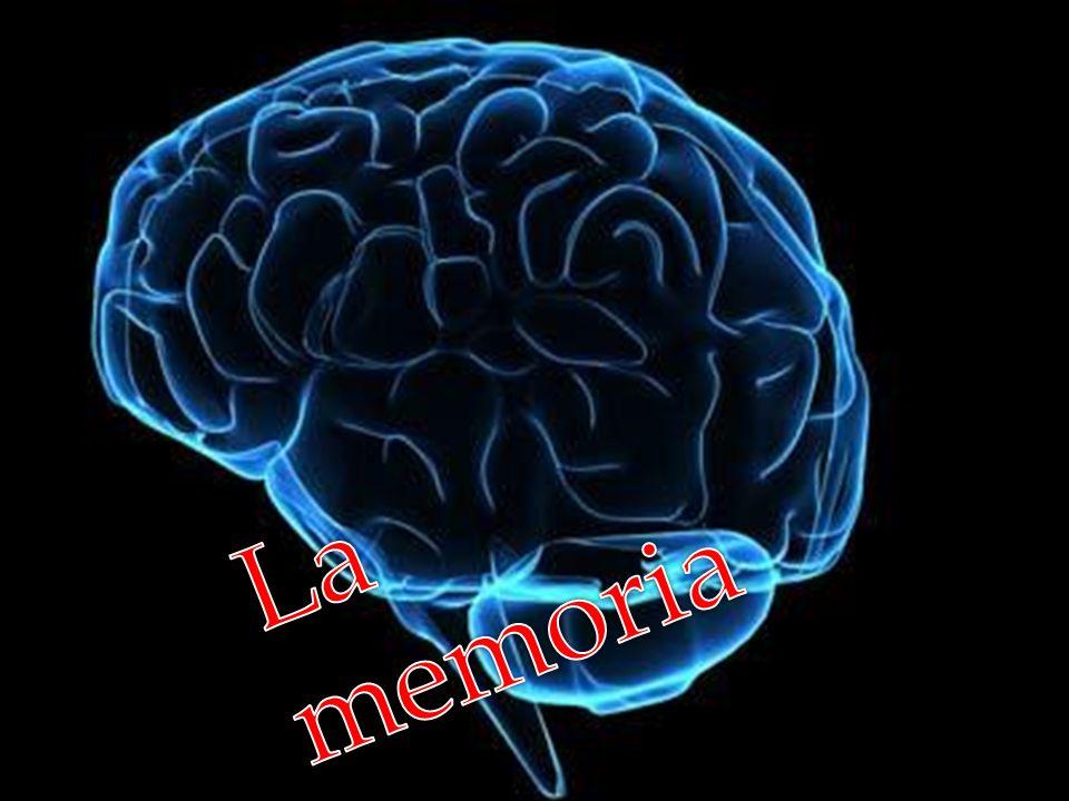 La memoria La memoria