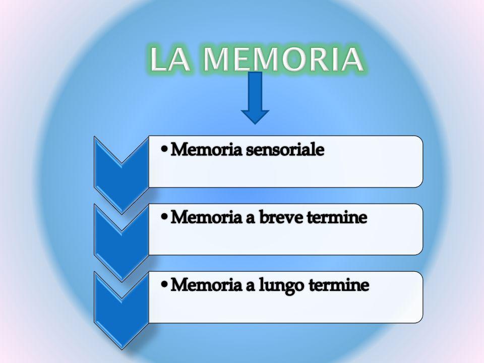 La memoria Memoria sensoriale Memoria a breve termine