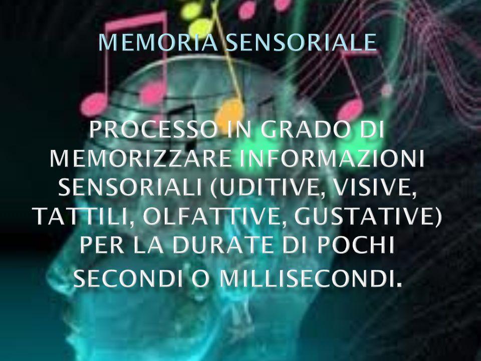 memoria sensoriale processo in grado di memorizzare informazioni sensoriali (uditive, visive, tattili, olfattive, gustative) per la durate di pochi secondi o millisecondi.