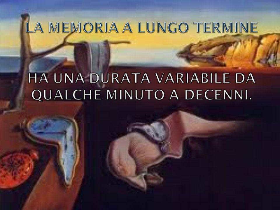 La memoria a lungo termine ha una durata variabile da qualche minuto a decenni.