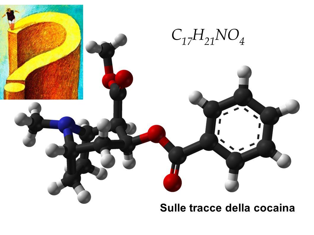 C17H21NO4 Sulle tracce della cocaina