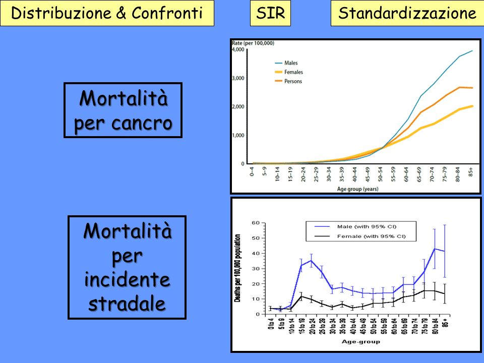 Mortalità per incidente stradale