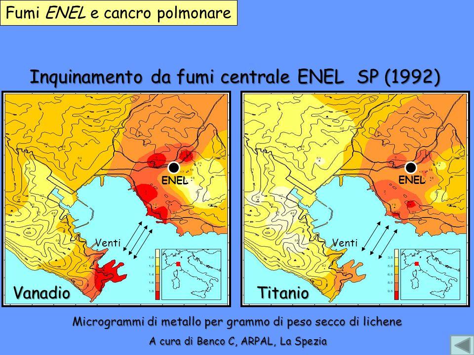 Inquinamento da fumi centrale ENEL SP (1992)