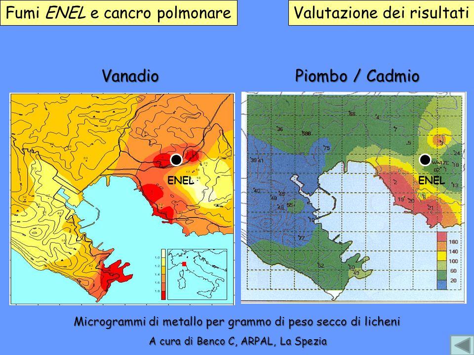 Vanadio Piombo / Cadmio Fumi ENEL e cancro polmonare