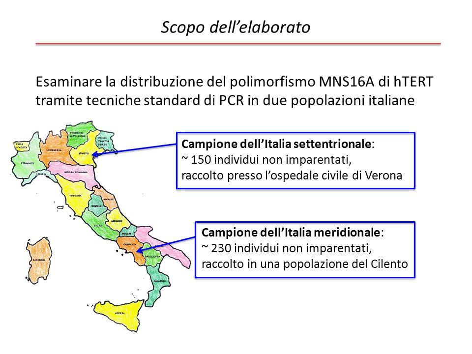 Scopo dell'elaborato Esaminare la distribuzione del polimorfismo MNS16A di hTERT tramite tecniche standard di PCR in due popolazioni italiane.