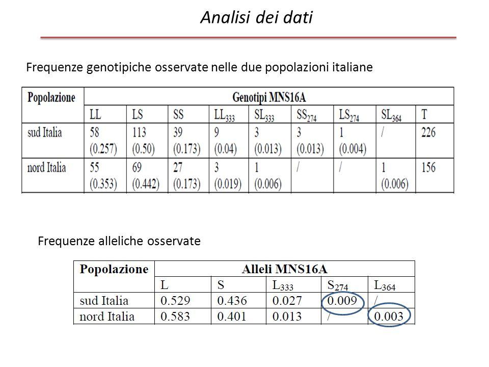 Analisi dei dati Frequenze genotipiche osservate nelle due popolazioni italiane.