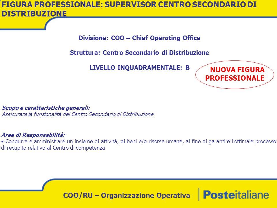 FIGURA PROFESSIONALE: SUPERVISOR CENTRO SECONDARIO DI DISTRIBUZIONE