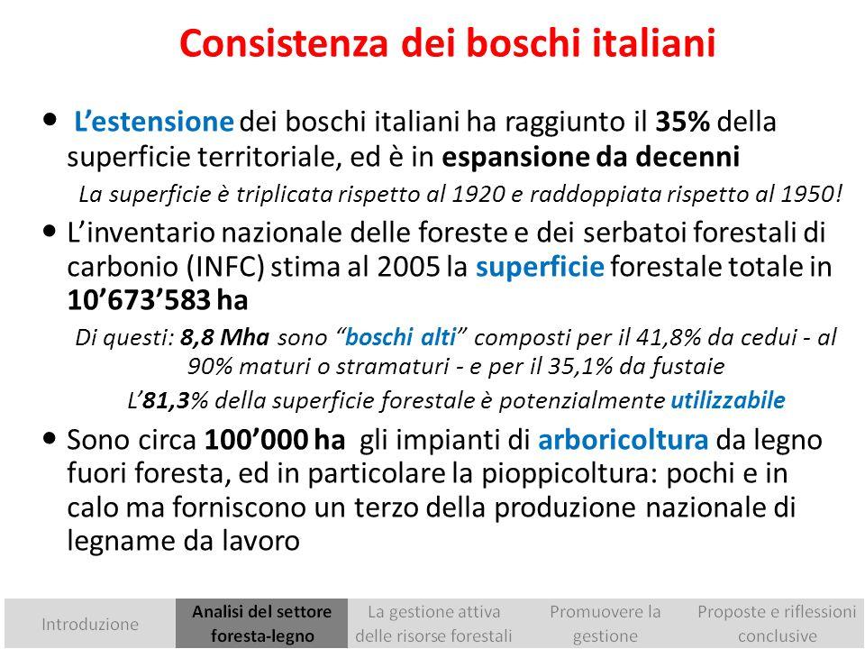 Consistenza dei boschi italiani
