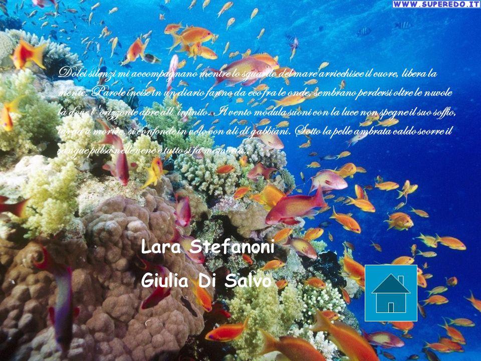 Lara Stefanoni Giulia Di Salvo