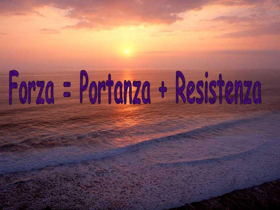 Forza = Portanza + Resistenza
