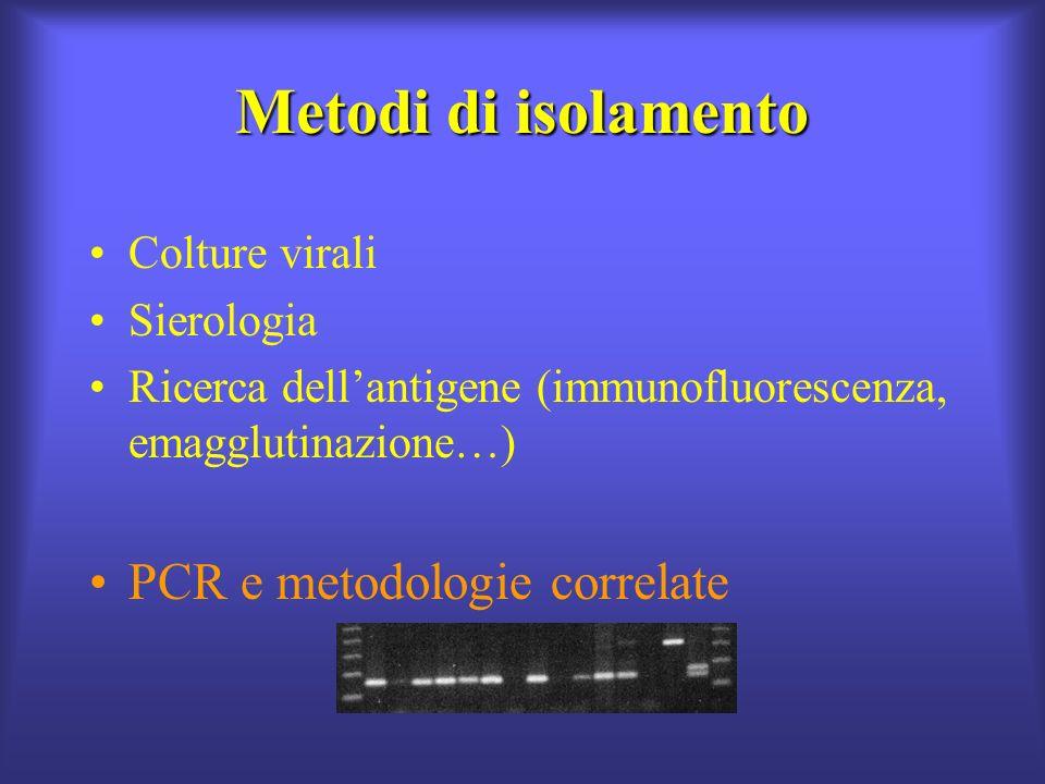 Metodi di isolamento PCR e metodologie correlate Colture virali