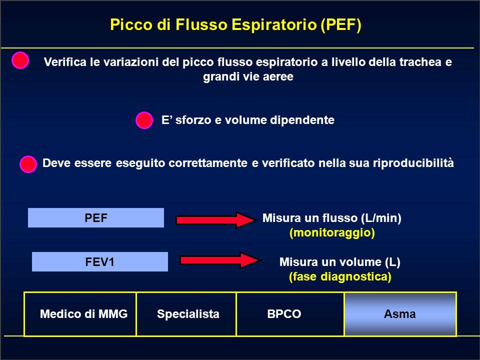 Picco di Flusso Espiratorio (PEF)