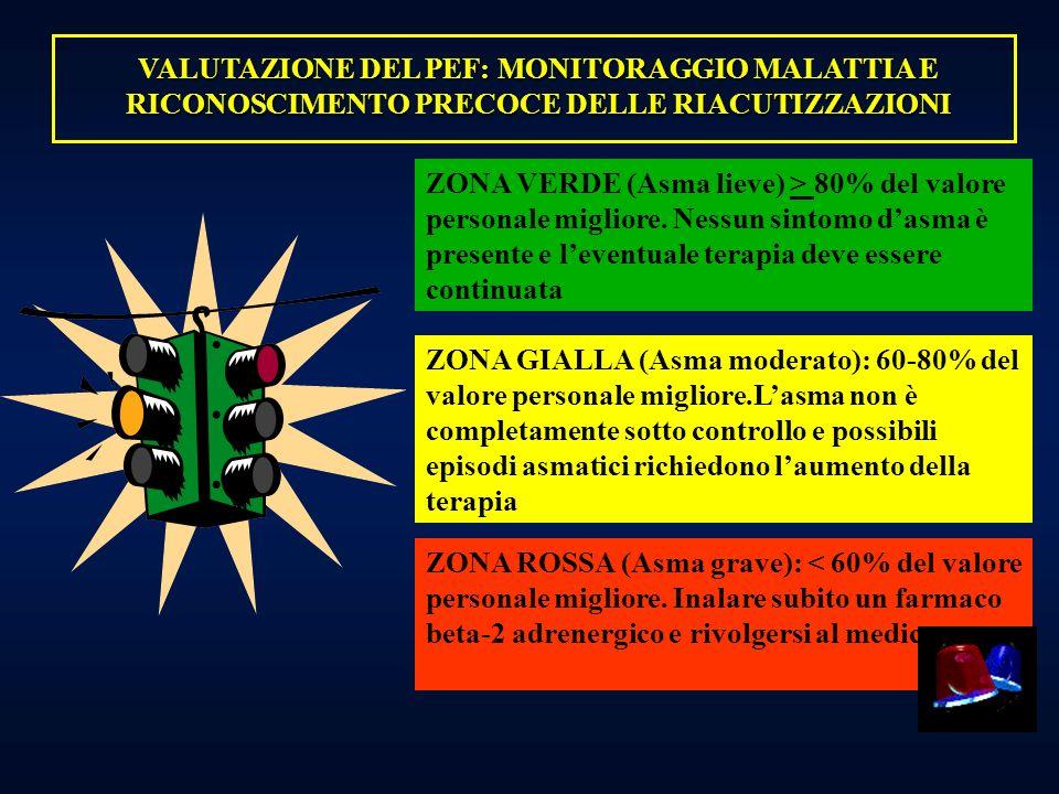 VALUTAZIONE DEL PEF: MONITORAGGIO MALATTIA E RICONOSCIMENTO PRECOCE DELLE RIACUTIZZAZIONI