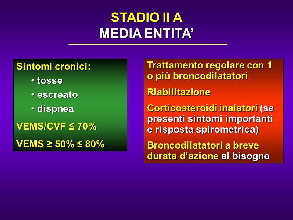 STADIO II A MEDIA ENTITA'