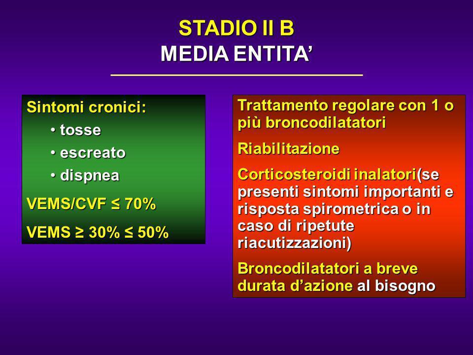 STADIO II B MEDIA ENTITA'