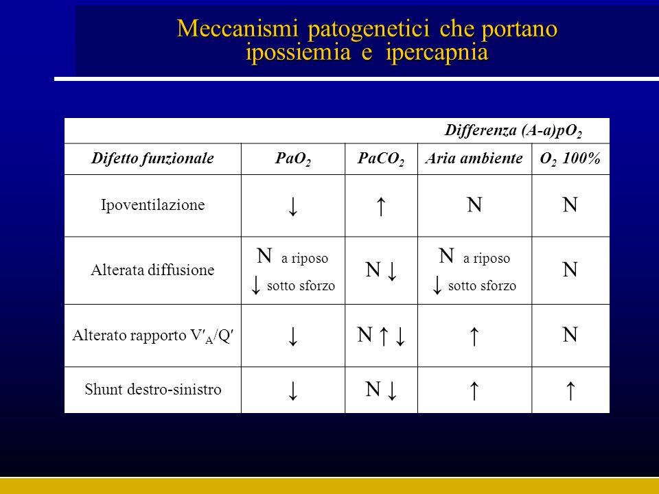 Meccanismi patogenetici che portano ipossiemia e ipercapnia