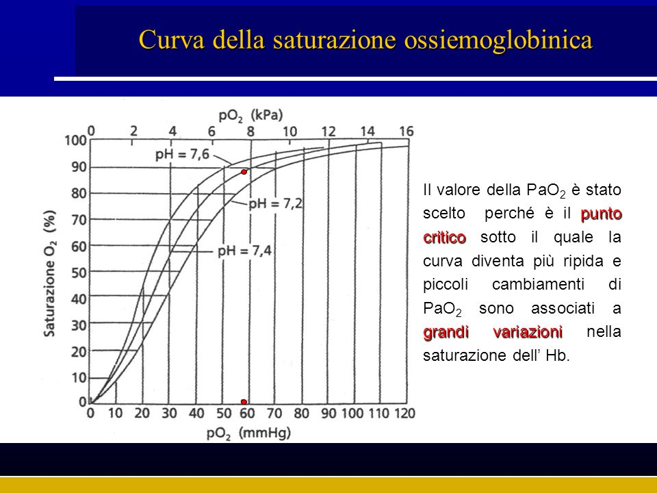 Curva della saturazione ossiemoglobinica