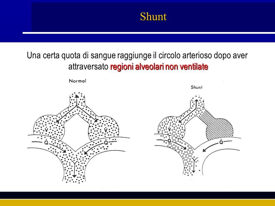 Shunt Una certa quota di sangue raggiunge il circolo arterioso dopo aver.