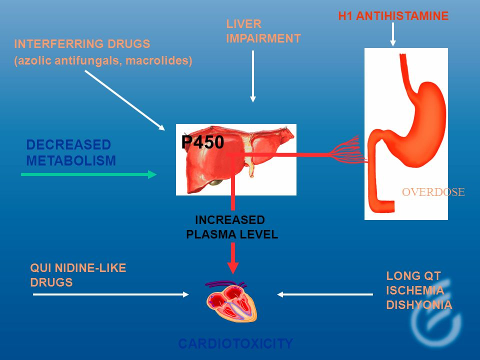 P450 DECREASED METABOLISM CARDIOTOXICITY H1 ANTIHISTAMINE LIVER