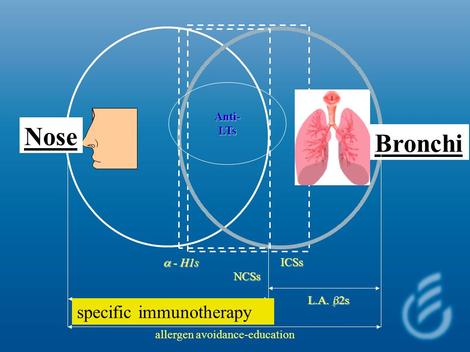 Nose Bronchi specific immunotherapy Anti- LTs a - H1s ICSs NCSs