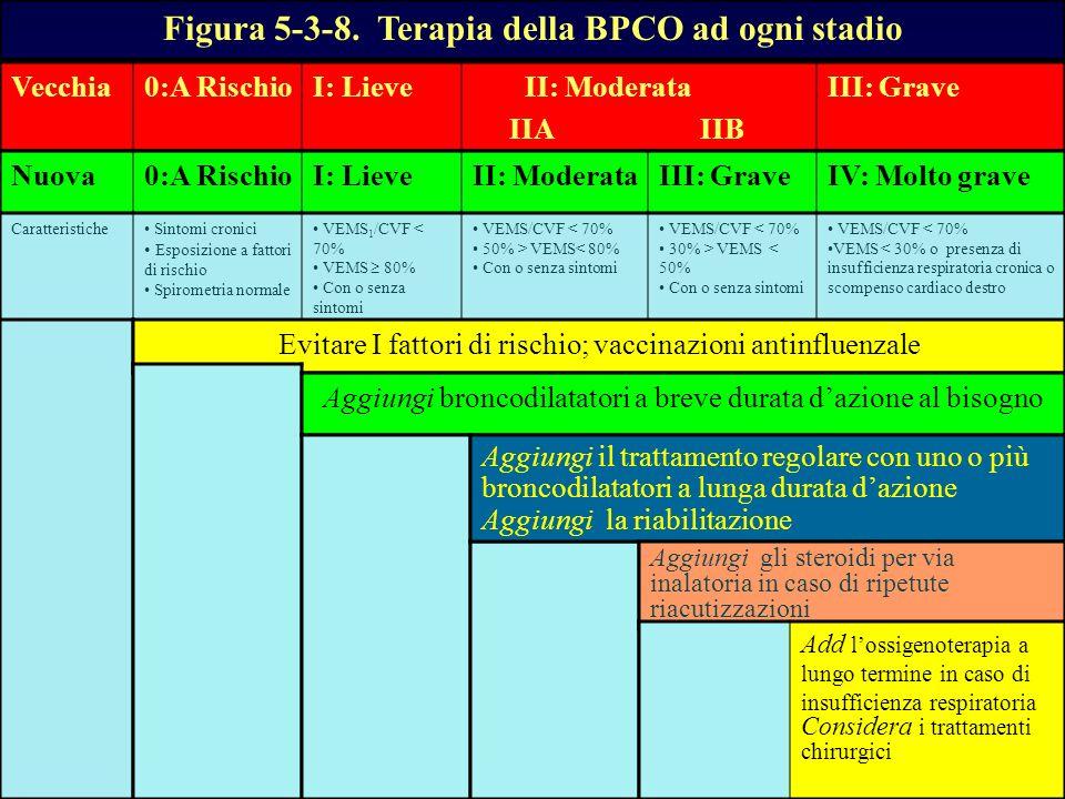 Figura 5-3-8. Terapia della BPCO ad ogni stadio