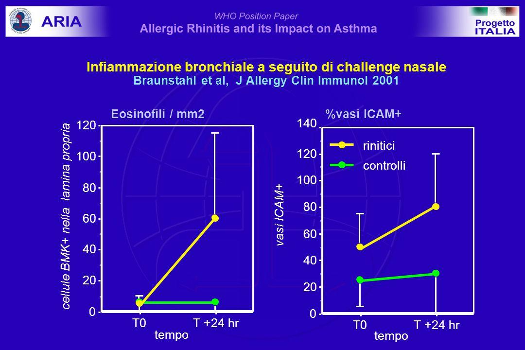 Infiammazione bronchiale a seguito di challenge nasale