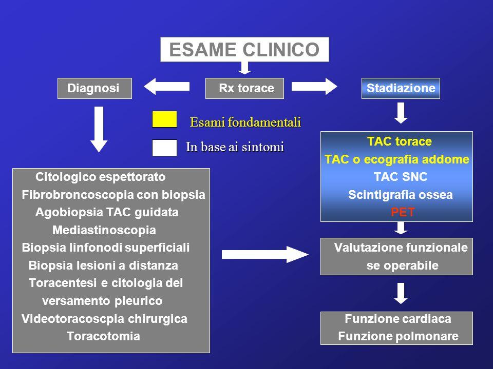 ESAME CLINICO Esami fondamentali In base ai sintomi