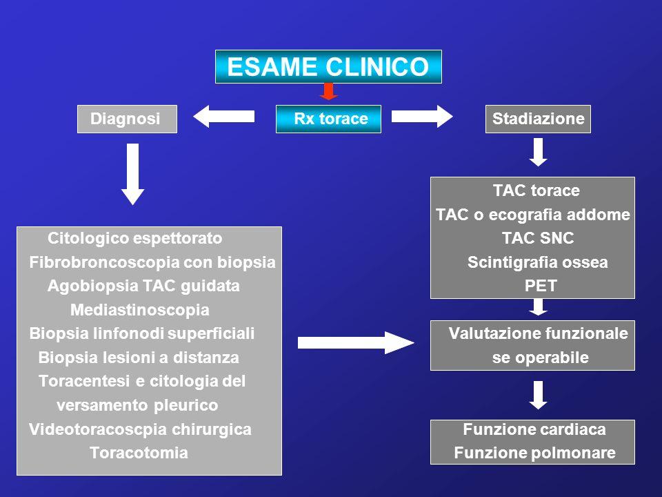 ESAME CLINICO Diagnosi Rx torace Stadiazione TAC torace