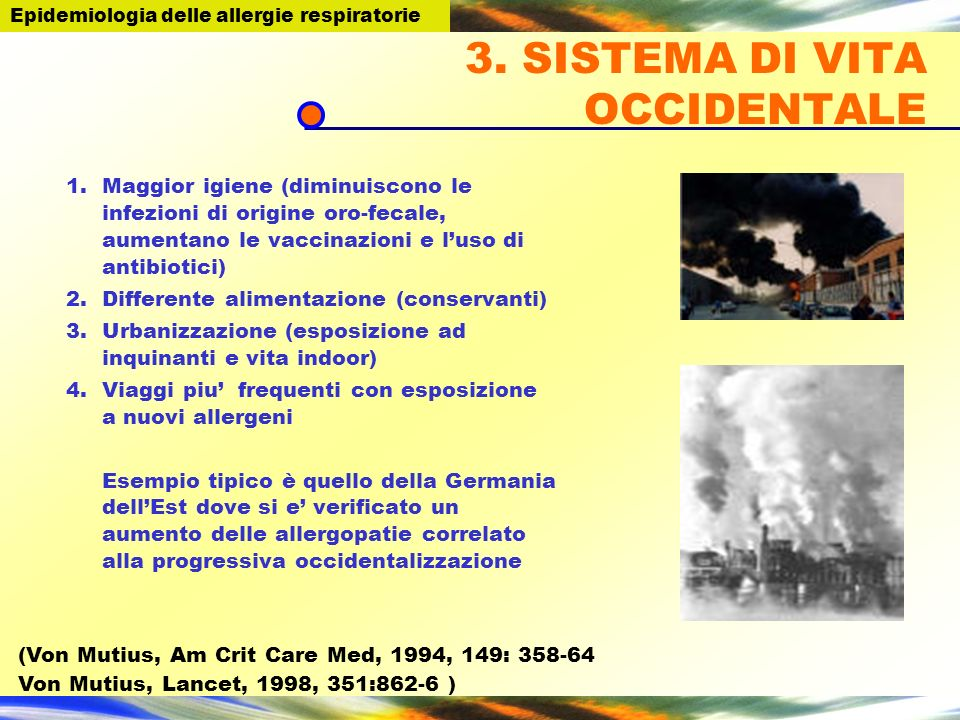 3. SISTEMA DI VITA OCCIDENTALE